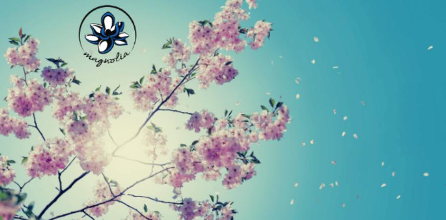 Buona Pasqua e le prime novità di maggio! 🌼🌻🌺🐣